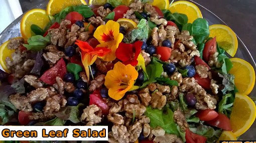 Sitges Green Leaf Salad